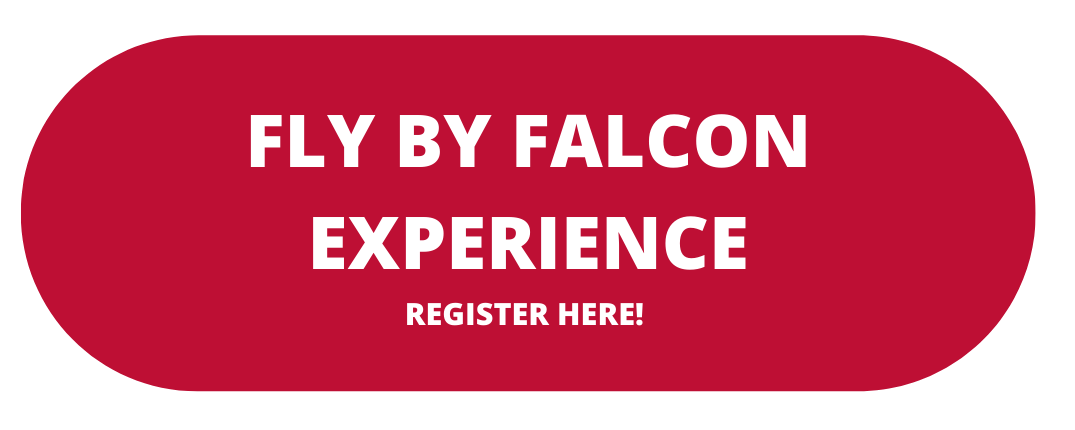 43FlyByFalconExperience.png